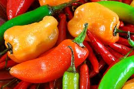 peppers1
